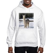 Alpaca In the Snow Hoodie
