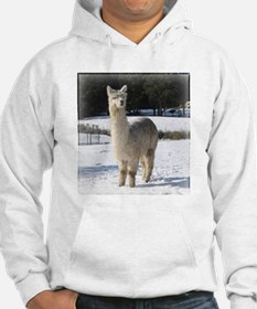 Alpaca In the Snow Jumper Hoody