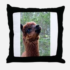 What's Up There? Throw Pillow