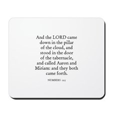 NUMBERS  12:5 Mousepad