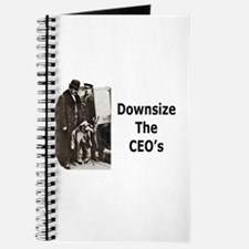 Downsize CEO's Journal