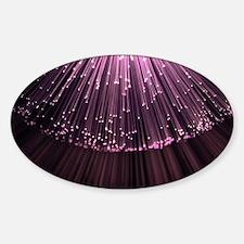 Pink fiber optic burst. Decal