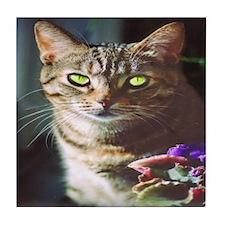 KT Cat Tile Coaster