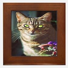 KT Cat Framed Tile