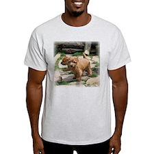 Norfolk Terrier Playmates Ash Grey T-Shirt