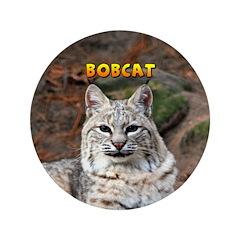 Bobcat 3.5