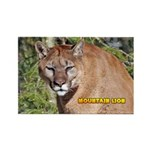 Mountain Lion Rectangle Magnet (100 pack)