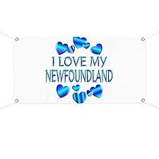 Newfoundland Banner
