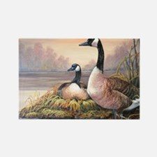 Cool Canadian geese Rectangle Magnet (10 pack)