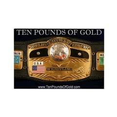 Ten Pounds Of Gold Magnet