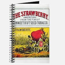 Unique Cartoon strawberry Journal