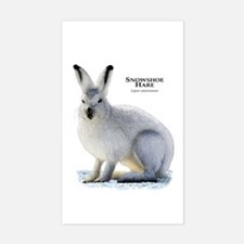 Snowshoe Hare Rectangle Decal