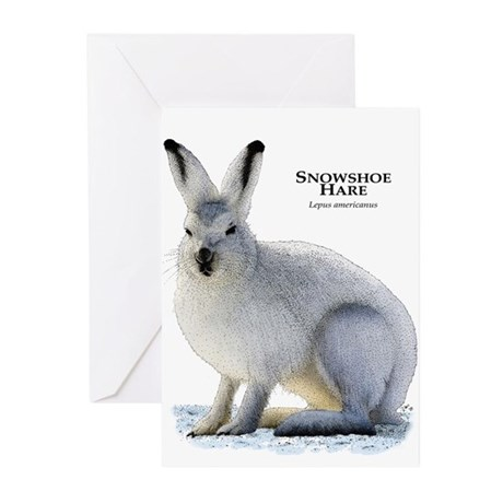Snowshoe Hare Greeting Cards (Pk of 10)