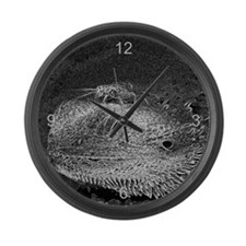 Lucky Cricket Large Wall Clock