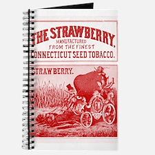 Funny Cartoon strawberry Journal