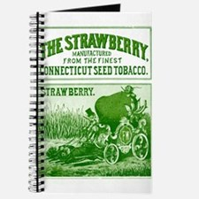 Cool Cartoon strawberry Journal