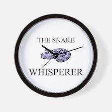 The Snake Whisperer Wall Clock