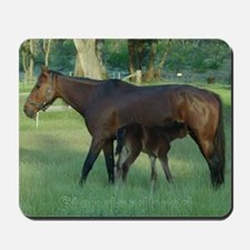 Standardbred Mare Foal Mousepad