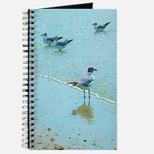 Gulls on the Beach Journal