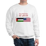 USA Support Palestine Sweatshirt
