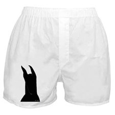 C Silhouette Boxer Shorts