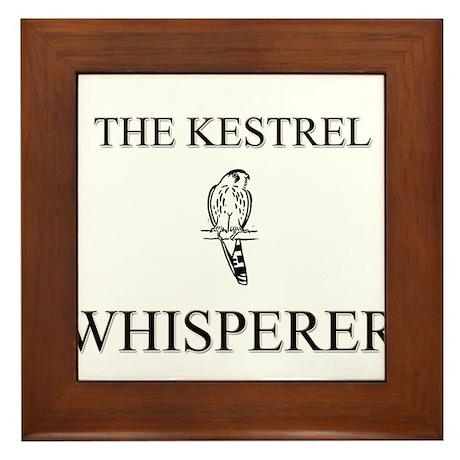The Kestrel Whisperer Framed Tile