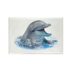 Happy Dolphin Rectangle Magnet (10 pack)