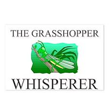 The Grasshopper Whisperer Postcards (Package of 8)
