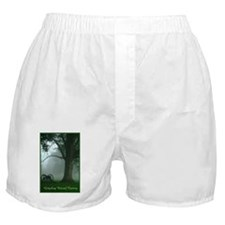 Gettysburg National Cemetery Boxer Shorts