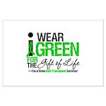 I Wear Green SCT Survivor Large Poster