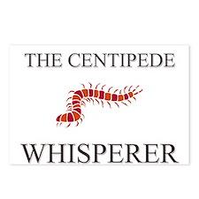 The Centipede Whisperer Postcards (Package of 8)