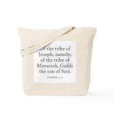 NUMBERS  13:11 Tote Bag