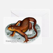California Newt Greeting Card