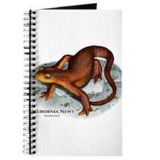 California Newt Journal