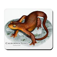California Newt Mousepad