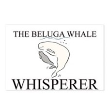 The Beluga Whale Whisperer Postcards (Package of 8