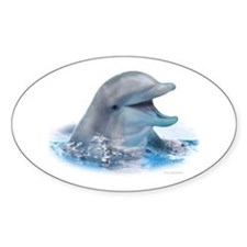 Happy Dolphin Decal