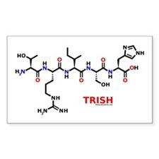 Trish name molecule Rectangle Decal