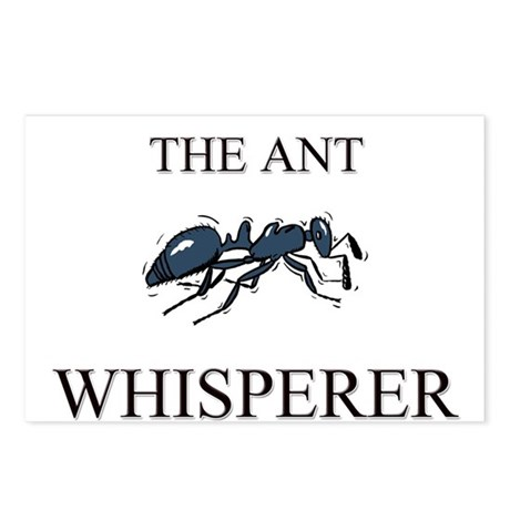 The Ant Whisperer Postcards (Package of 8)