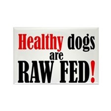 Healthy dogs - Rectangle Magnet
