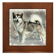Alaskan Malamute Art Framed Tile