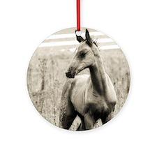 Horse Photograph Ornament (Round)