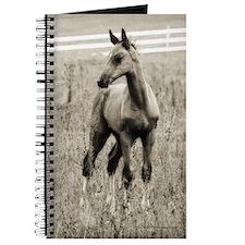 Horse Photograph Journal
