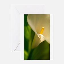 UP CLOSE_9 Greeting Card
