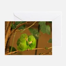 Adorable Parrotlets Greeting Card