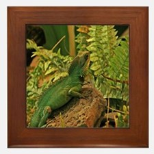 Chinese Water Dragon Framed Tile