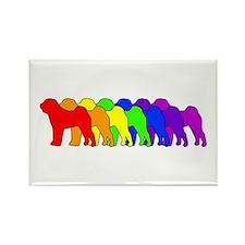 Rainbow Shar Pei Rectangle Magnet