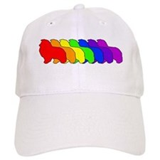Rainbow Sheltie Baseball Cap