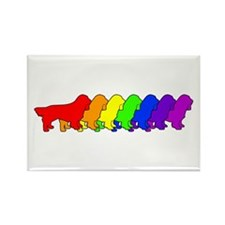 Rainbow Sussex Rectangle Magnet