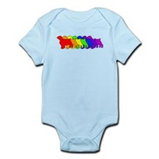Rainbow Welsh Springer Onesie